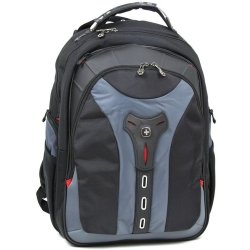 Wenger Pegasus 17 Computer Backpack blue